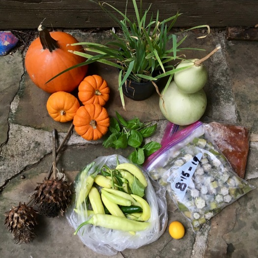 Gifts from the garden