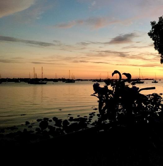 Sunset at Sarasota with plastic flamingos