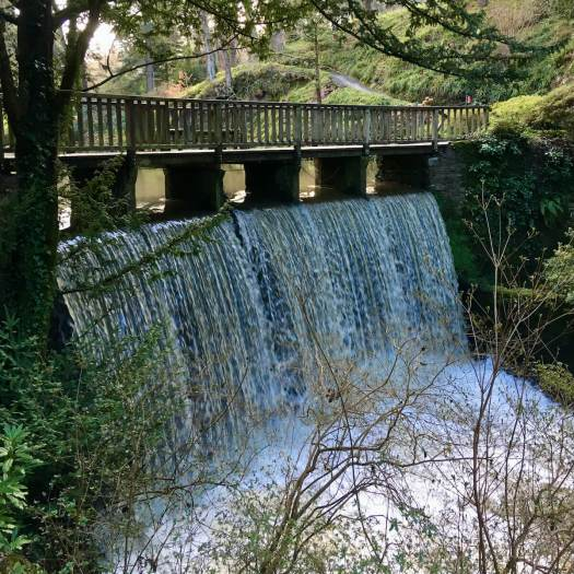 Bridge over a waterfall at Bodnant Garden