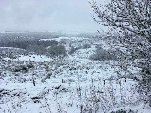 View of Darwen from the moor in the snow