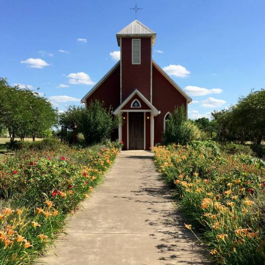 Antique Rose Emporium Chapel with daylilies
