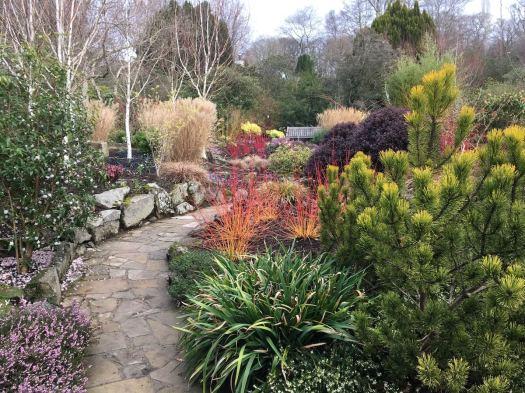 Bodnant's winter garden