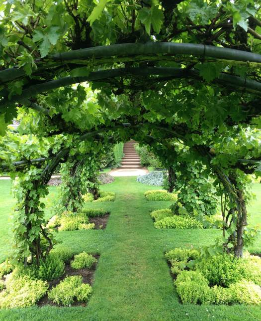 Leafy arbour at Powis Castle
