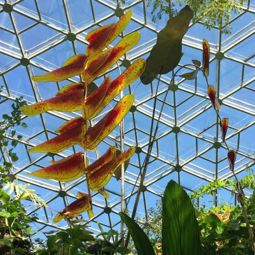 Heliconia Art Glass by Craig Mitchell Smith