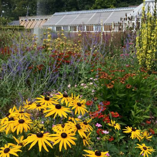 Floral display at Scampston Hall Gardens