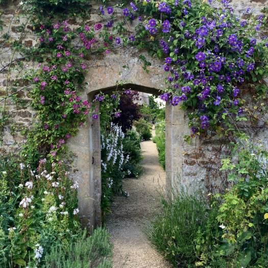 Clematis round a doorway at Rousham Garden