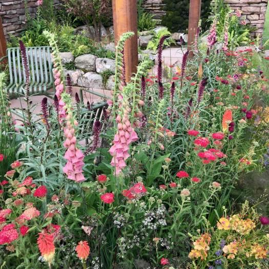 Elements of Sheffield BBC Garden