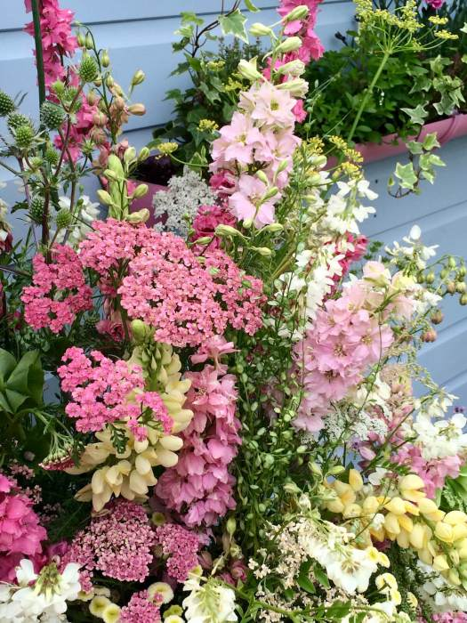 Cut flowers in pastel shades