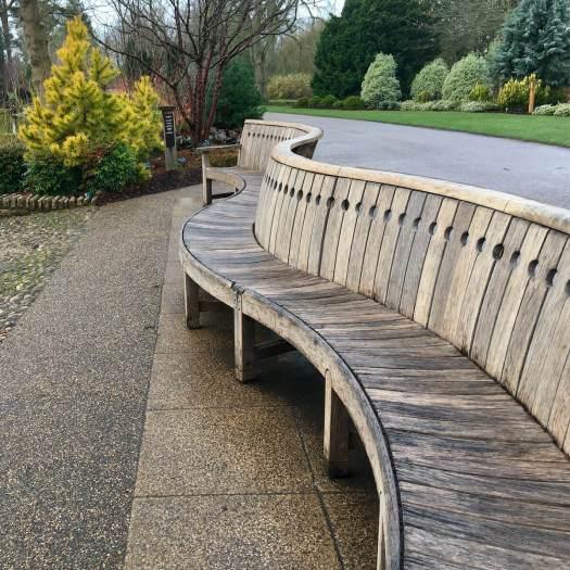 Serpentine wooden bench at RHS Garden Wisley