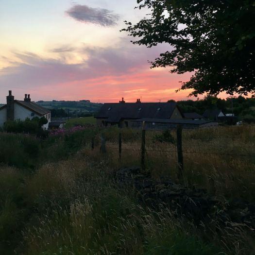 Knowle Lane at sunset